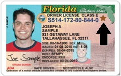FL sample driver's license
